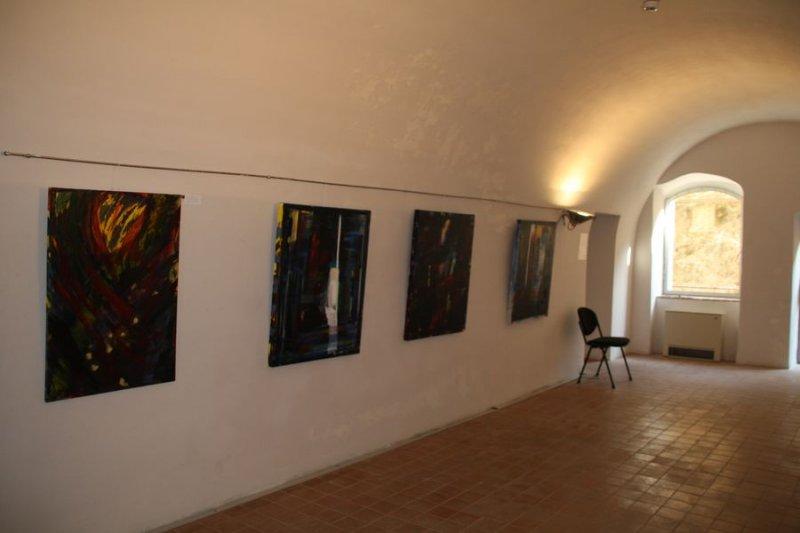 Focus sull'arte al Priamàr, Savona 2014 (12)